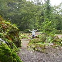 Pocztówka z podróży: Zielona Wyspa